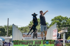 Air-Dogs-2019-18