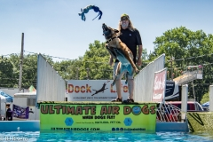 Air-Dogs-2019-21