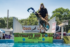 Air-Dogs-2019-22