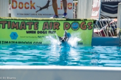 Air-Dogs-2019-3